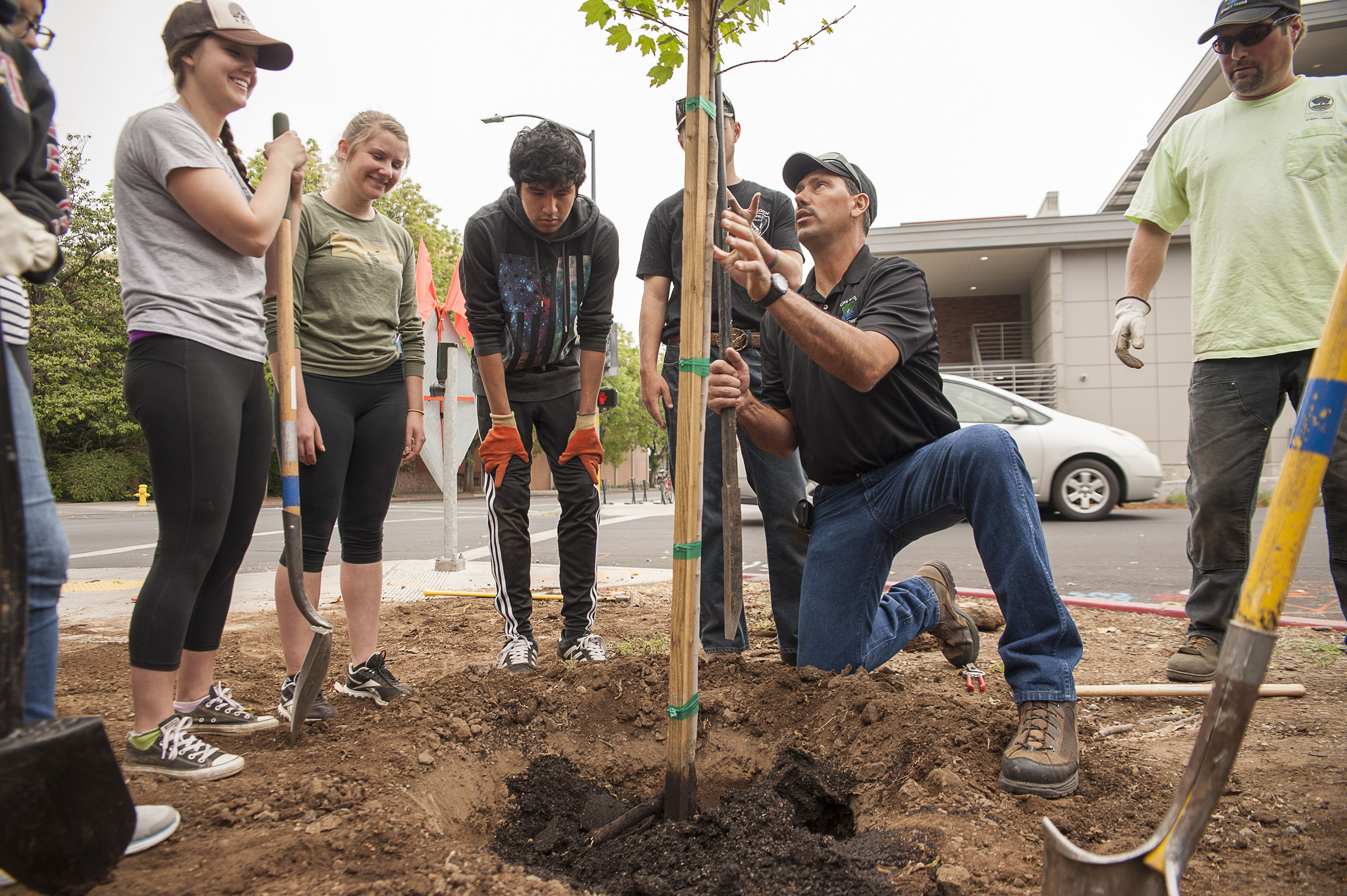 Students at Cal State Channel Islands planting trees