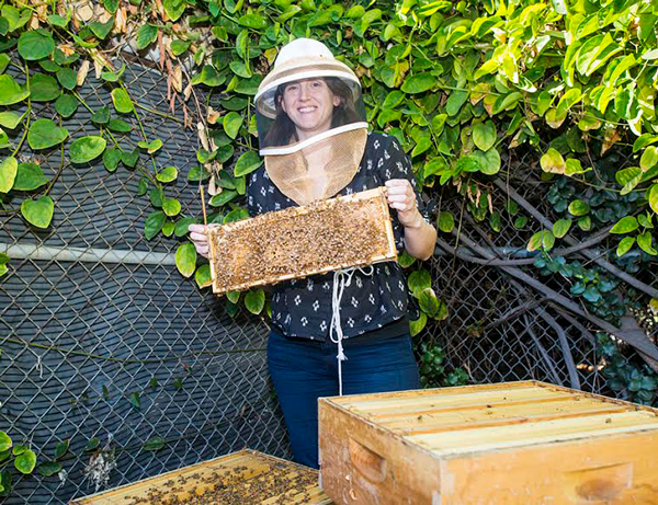 Beekeeper holding Honey Board