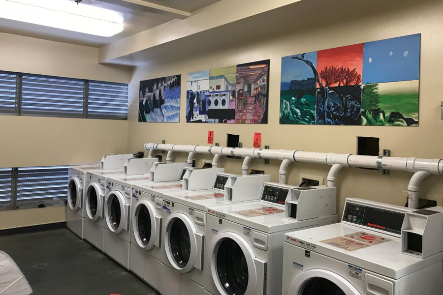 This Laundry to Landscape model system installed in Pinnacles Residential Hall collects, filters and irrigates adjacent landscaping with water from eight washing machines. Combined with low-water plumbing fixtures throughout campus, the system decreased potable water use by 26 percent from 2011 to 2019.