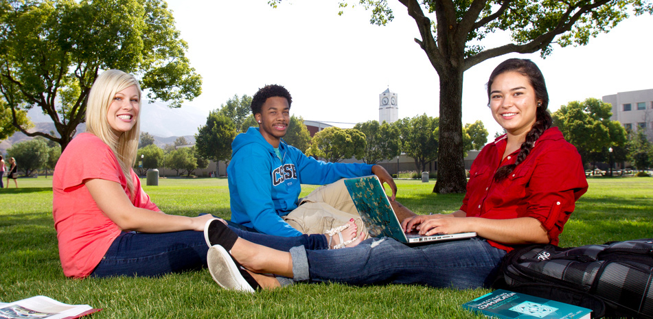 Students sitting on the grass