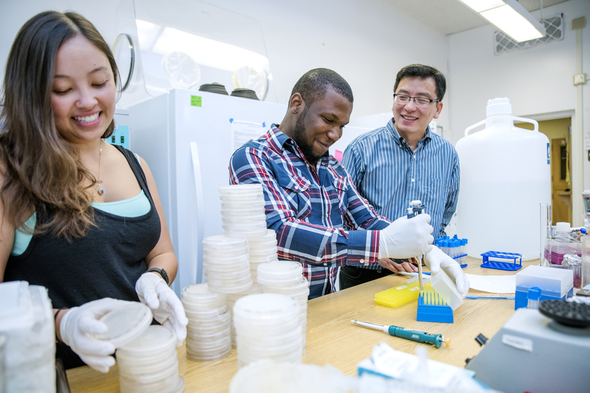Professor Jianmin Zhong, Ph.D., oversees students performing summer research.