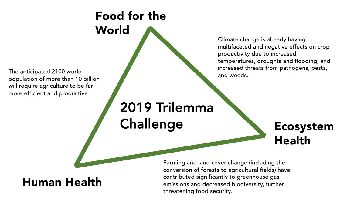 2019 Trilemma Graphic.JPG