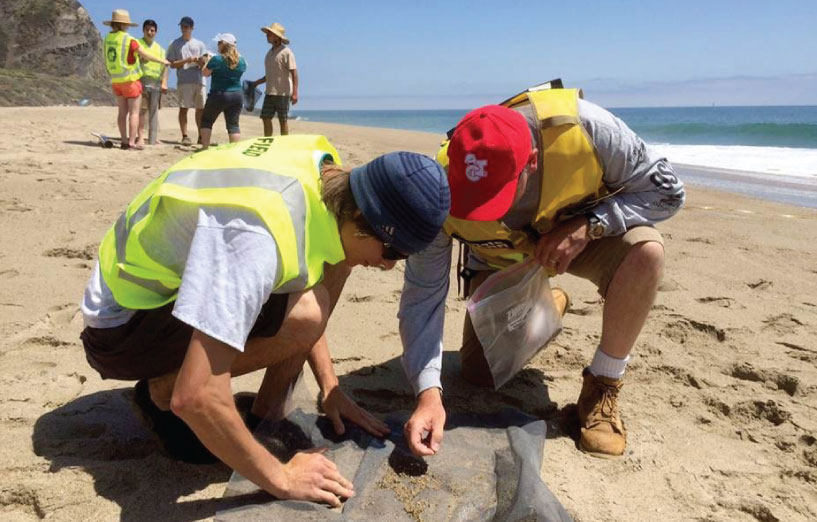 Assessing the Effects of the Refugio Oil Spill